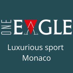 One eagle - Photo - Membre